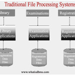 Traditional File Processing Systems Diagram