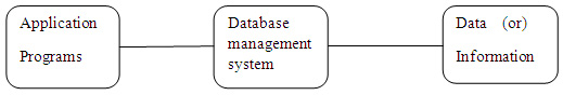 Database system with data independence