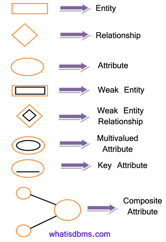 entity relationship diagram symbols E-R Diagrams in DBMS: Components, Symbols, And Notations