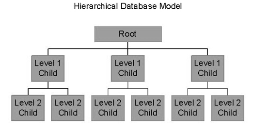 Types and classification of database management system they are similar to hierarchical database they look like a cobweb or interconnected network of ccuart Images
